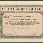 El Delta del Guazu 500
