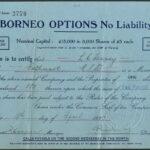 Borneo Options 2770