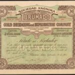 Argentina-Brumado-Gold-Dredging-Exploration-Co-50-shares-of-1-1905-172694605080